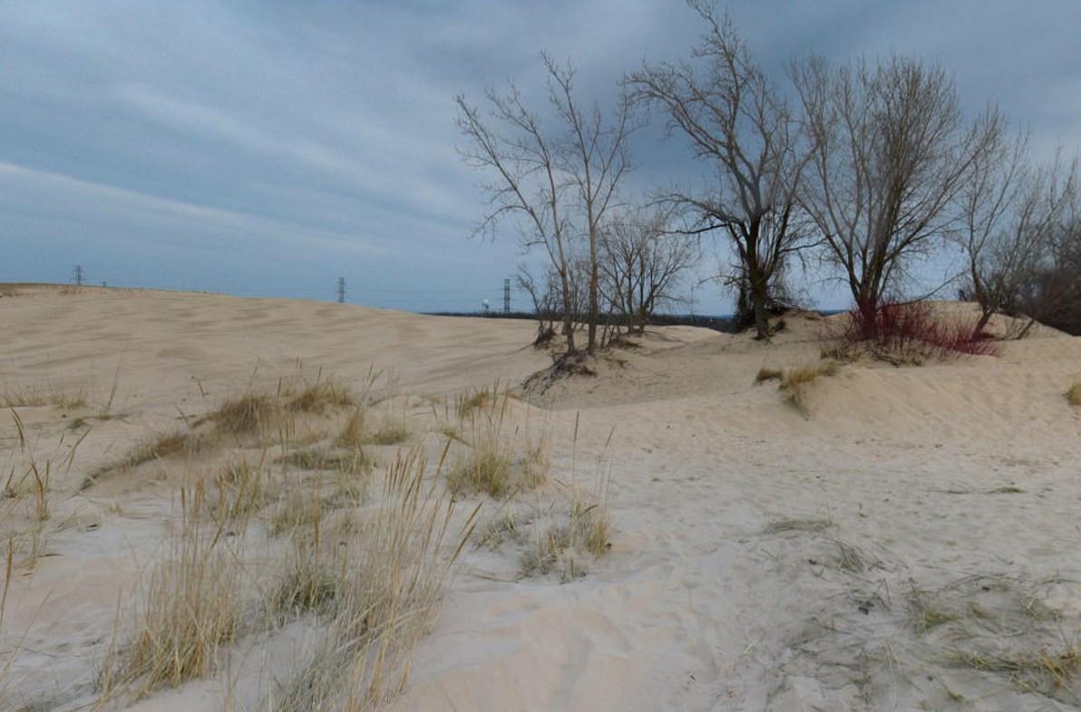 Ямы в песке - дюны Маунт-Болди
