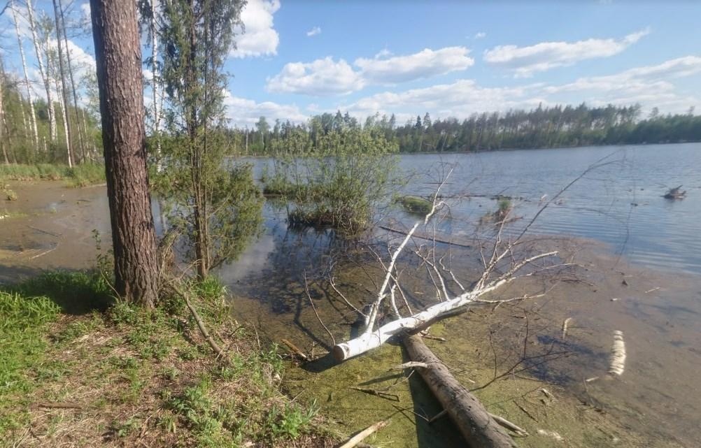 Кратер от метеорита в Подмосковье - тайны озера Смердячье