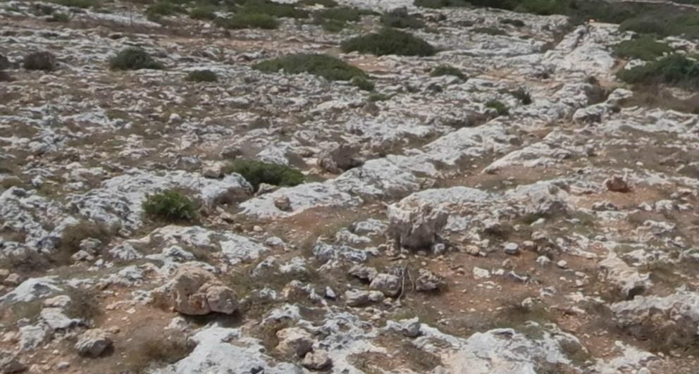 Мегалитические колеи доисторической Мальты