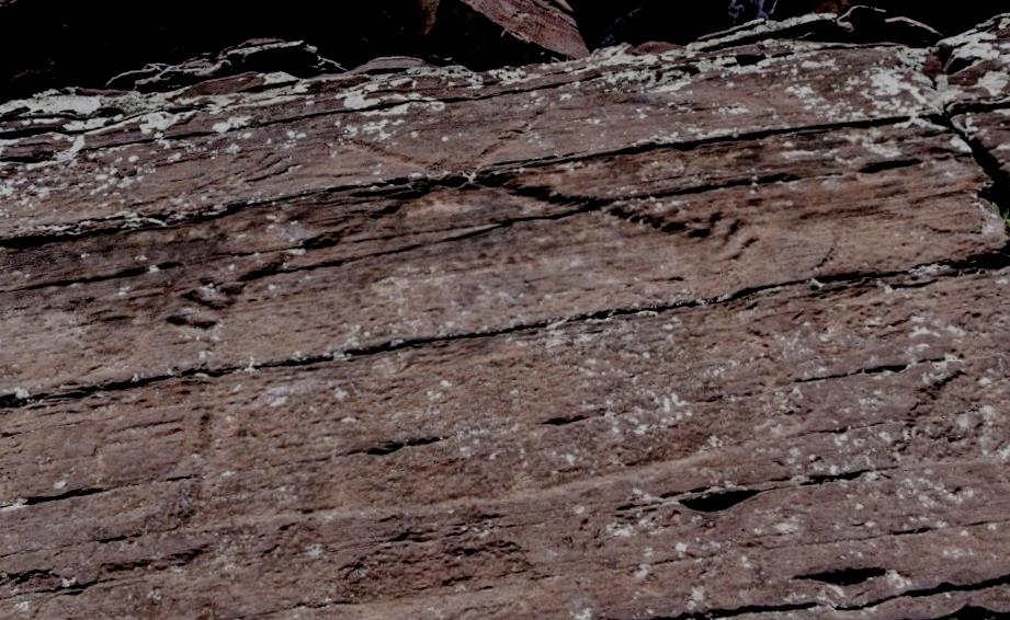 Древние рисунки Хакасии, которые можно заметить утром или на закате - петроглифы на хребте Бояры