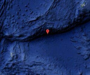 В глубинах Марианской впадины обитают микроорганизмы, которые питаются нефтью