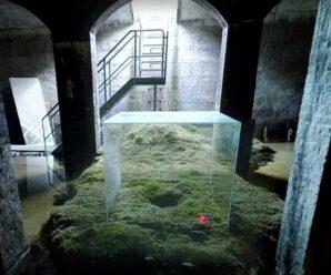 Необычное старое водохранилище под землёй — Цистерна в Сёндермаркене