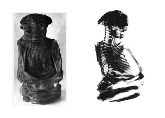 Исчезнувшая мумия карлика, который, возможно, был представителем мифической расы маленьких людей