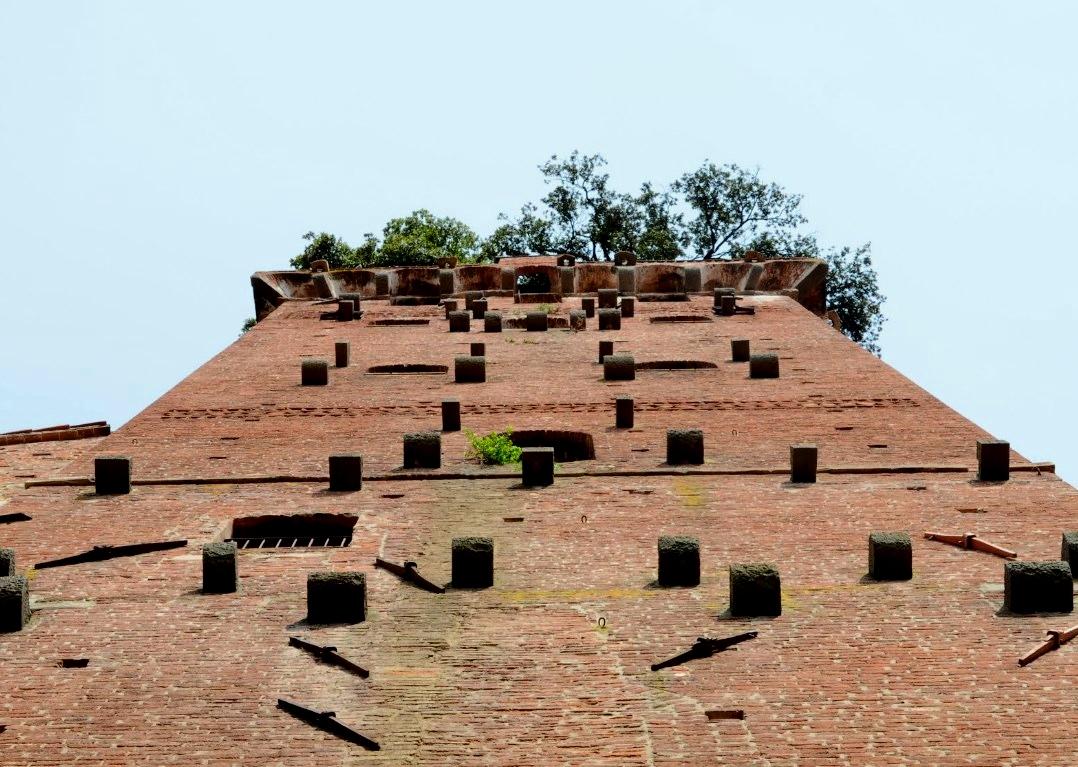 Средневековая башня с деревьями на крыше - Гуиниджи
