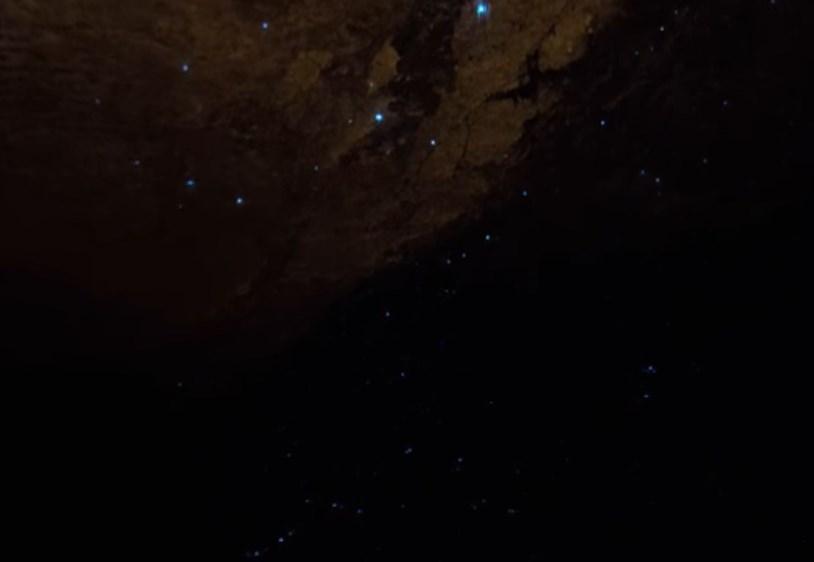 Необычная жизнь в глубинах пещер: светящиеся плотоядные организмы, освещающие кромешную тьму Вайтомо
