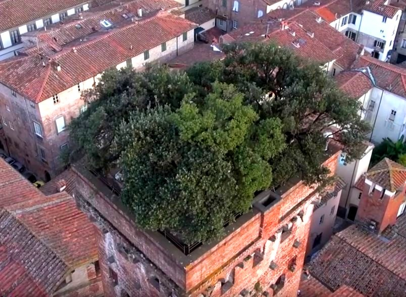 Средневековая башня Гуиниджи