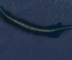 Этот «живой» остров вселял ужас в сердца мореплавателей — Сейбл