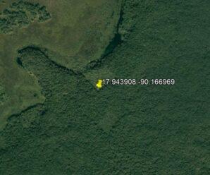 Сопоставив древние звездные карты, школьник из Канады, возможно, обнаружил  затерянный город майя