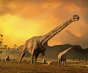 В Кемеровской области ученые обнаружили кость гигантского динозавра, предположительно, зауропода