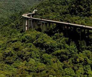 Дорога над джунглями — шоссе Иммигрантов в Бразилии