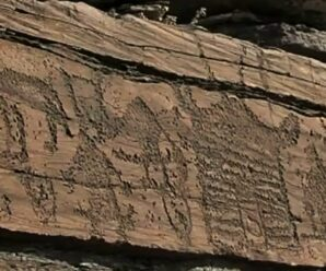 Древние рисунки Хакасии, которые можно заметить утром или на закате — петроглифы на хребте Бояры