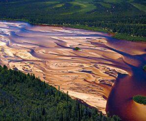 Самые северные подвижные дюны и барханы посреди тайги возле озера Атабаска