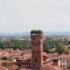 Средневековая башня с деревьями на крыше — Гуиниджи
