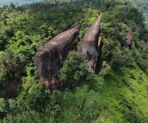 Словно окаменевшие огромные кашалоты среди деревьев — Китовые Скалы