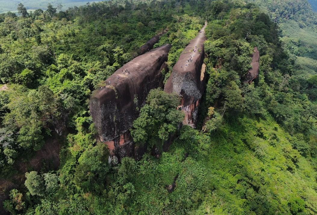 Словно окаменевшие огромные кашалоты среди деревьев - Китовые Скалы