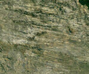 Гигантская древняя пустыня в Африке покрыта лесом, но её следы видно из космоса — линейные дюны